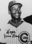 Chicago Cubs Ernie Banks